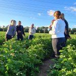 rondje kavelpad veld boeren team agro